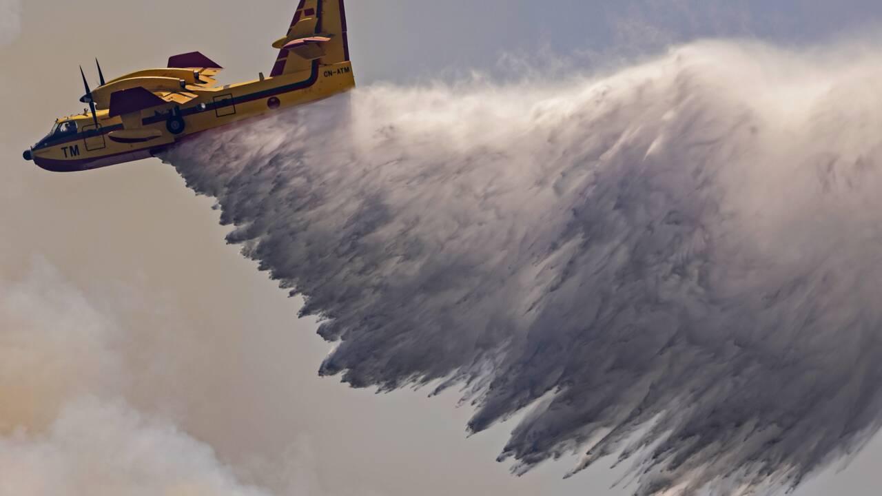 """L'incendie dans le nord du Maroc """"totalement maîtrisé"""", selon les autorités"""