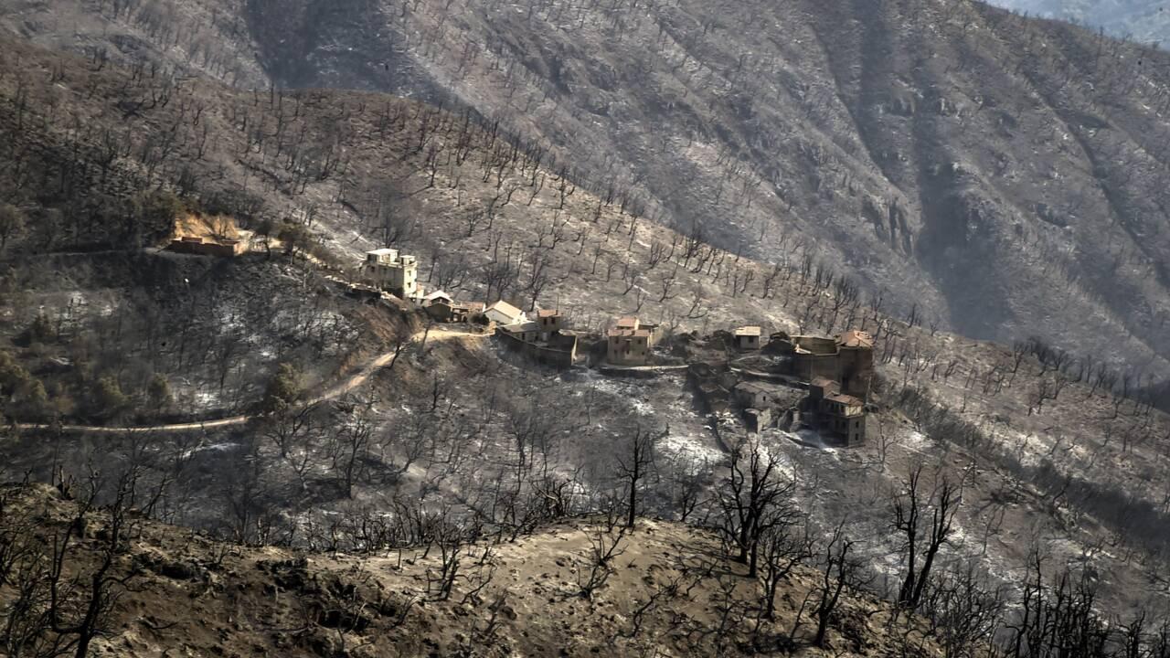 Algérie: tous les incendies ont été éteints