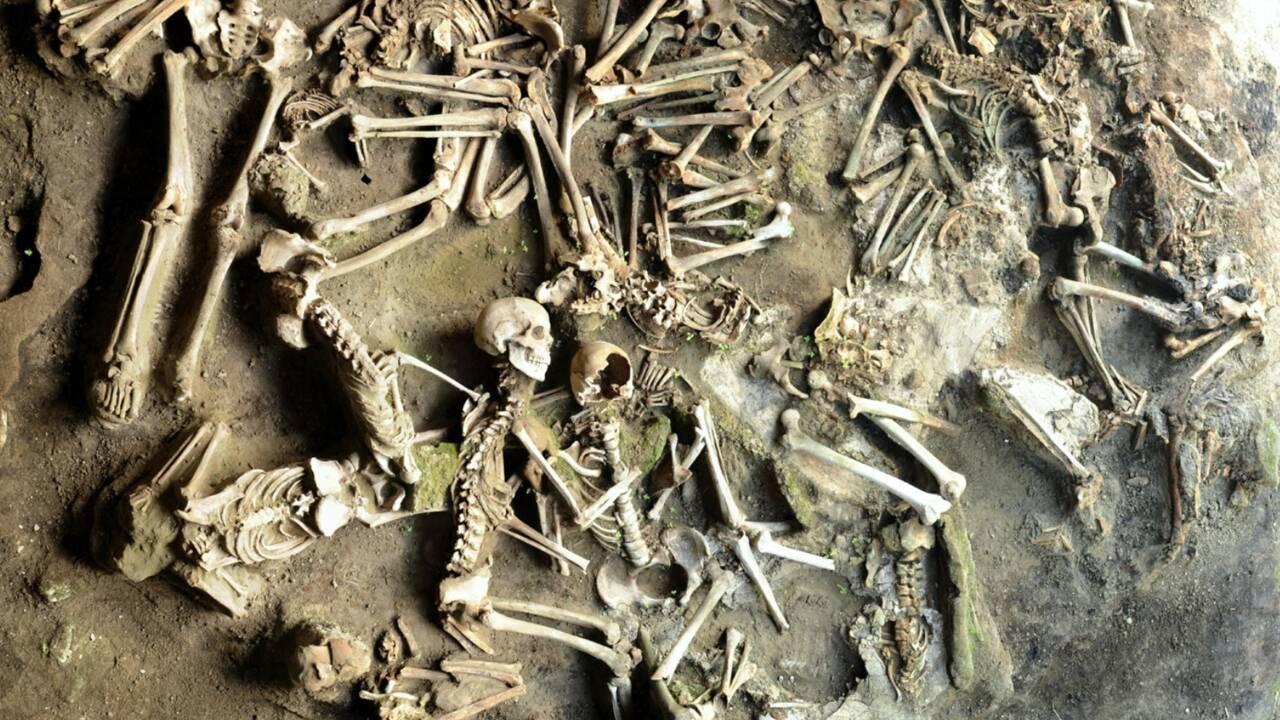 Que mangeaient les habitants d'Herculanum ? Des scientifiques ont enquêté sur les habitudes alimentaires dans l'ancienne cité romaine