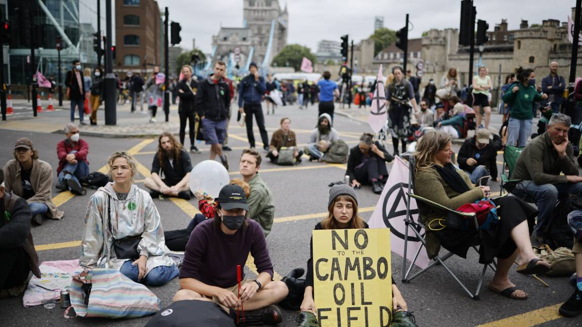 Londres: le célèbre pont de Tower Bridge bloqué par des militants écologistes