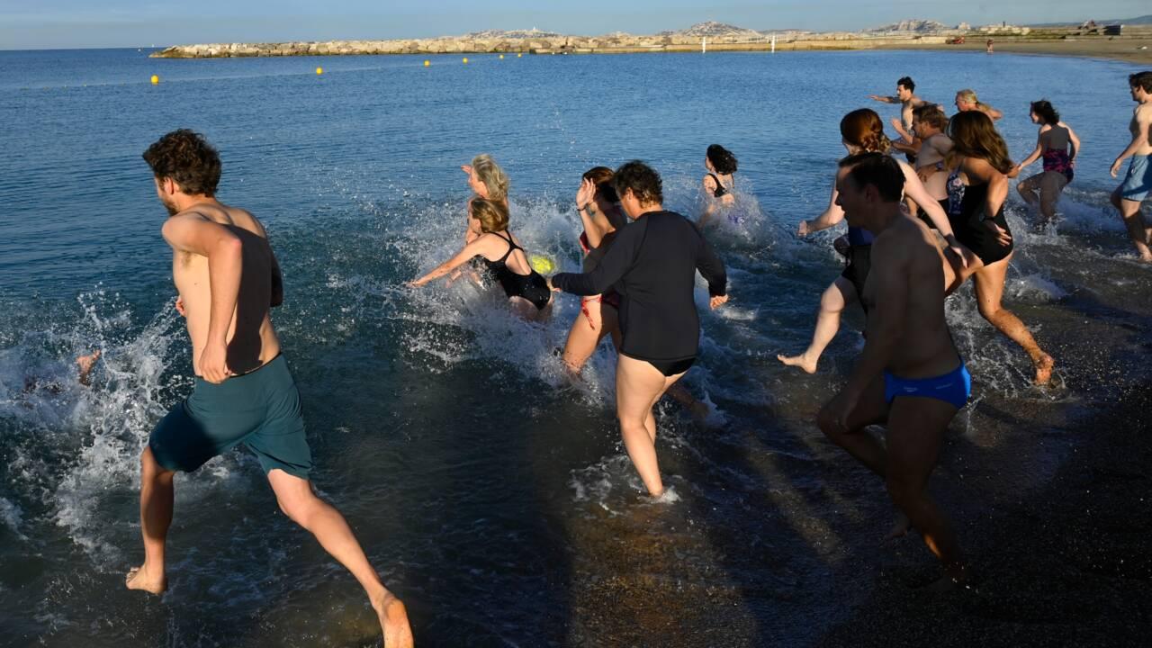 Bain de mer à Marseille pour alerter sur l'impact climatique du chalutage de fond