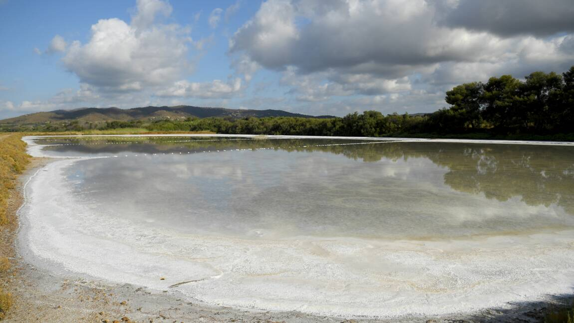 Changement climatique: les salins d'Hyères font sauter les digues et s'adaptent à la montée des eaux
