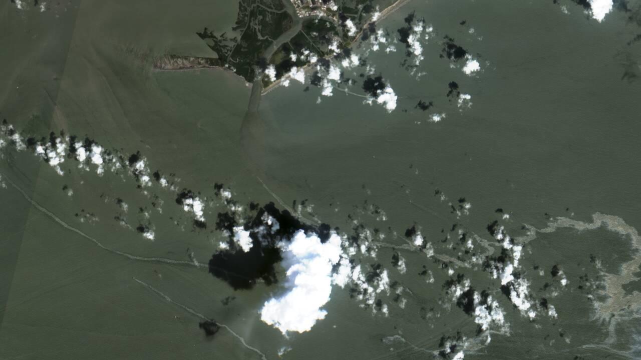 Pollution au pétrole dans le golfe du Mexique après le passage d'Ida