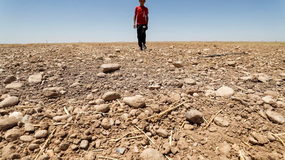 Réchauffement climatique: les pays du Moyen-Orient en première ligne