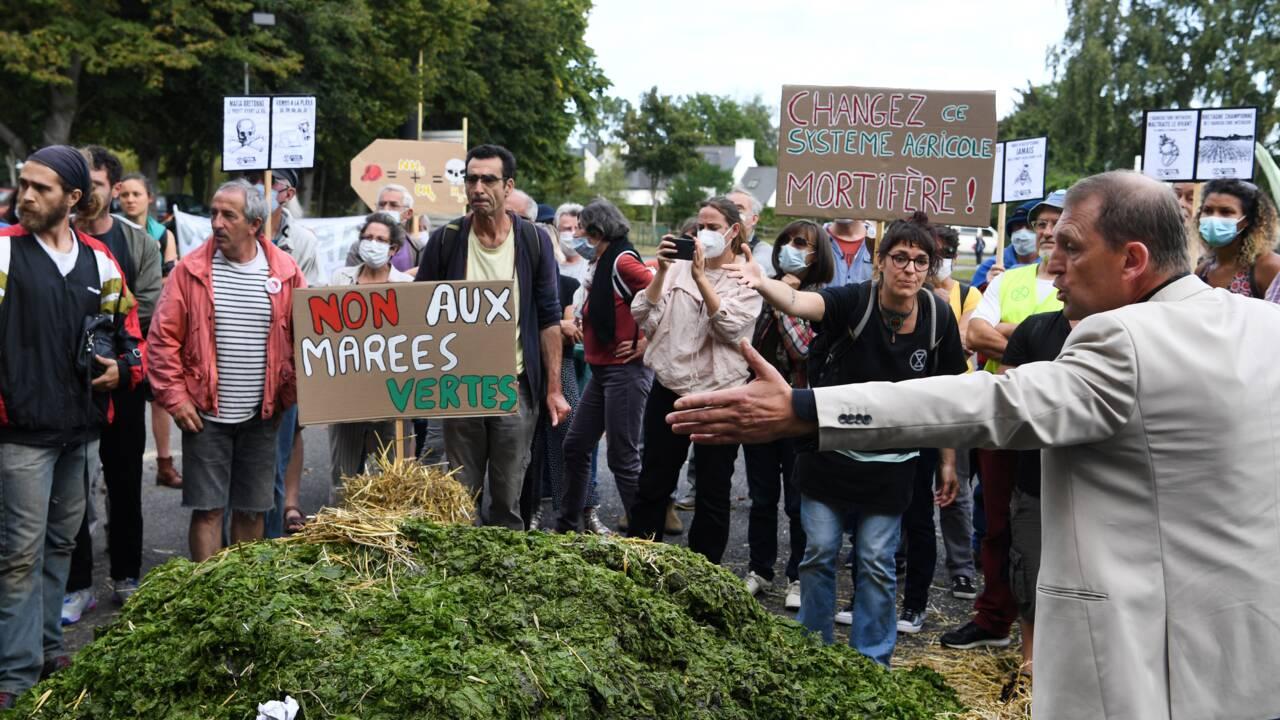 Algues vertes: face à face tendu entre militants et agriculteurs