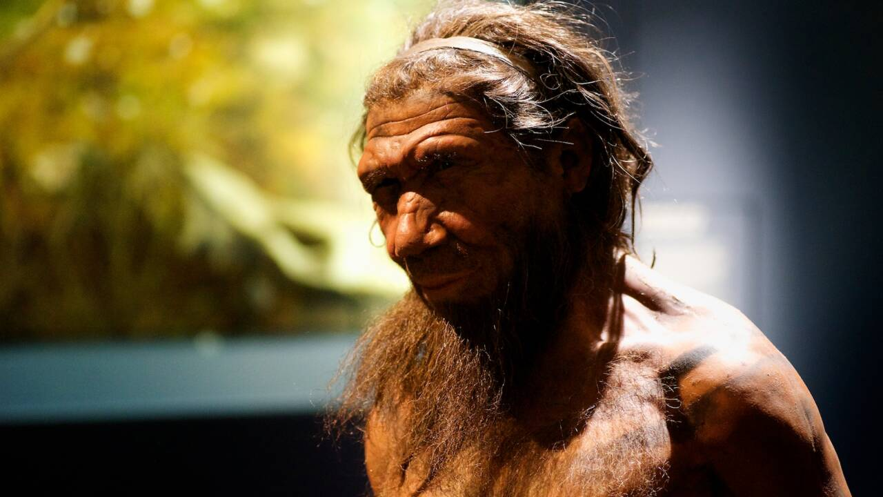 Des scientifiques se sont mis dans la peau de Néandertaliens pour comprendre comment ils chassaient