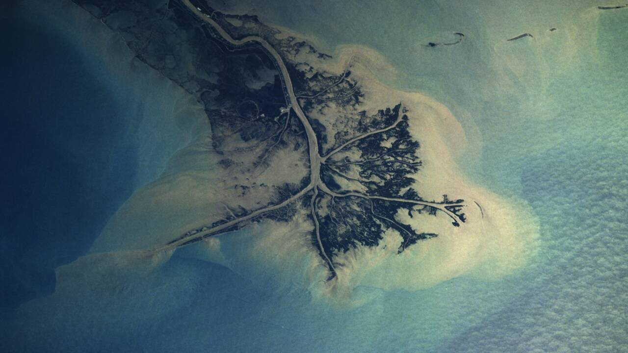 Fleuve Mississippi : ce qu'il faut savoir sur celui que l'on surnomme le Nil d'Amérique