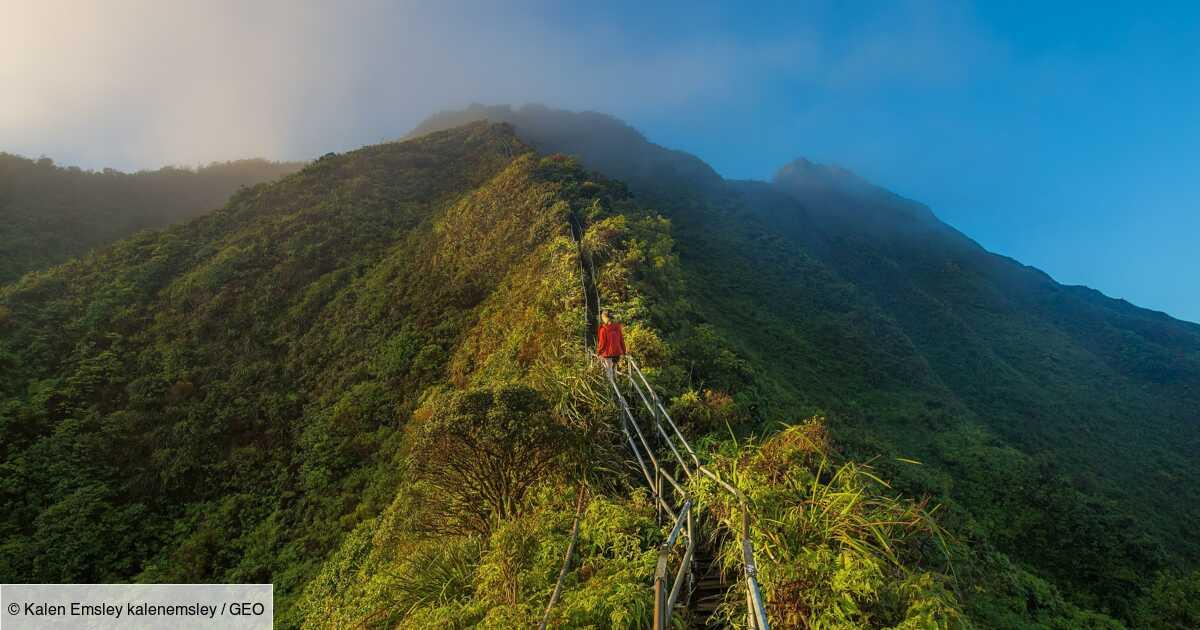 Haiku Stairs : trop dangereux, les escaliers légendaires de Hawaï vont être détruits