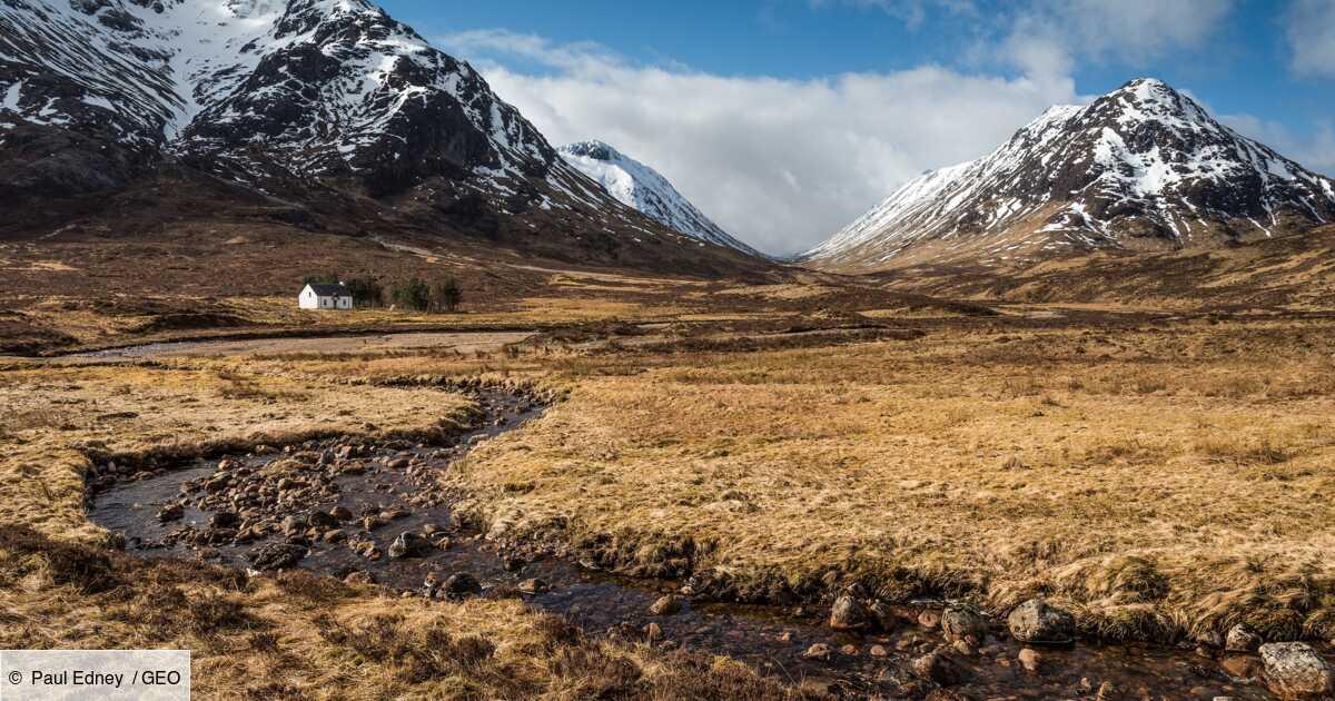 Ecosse : lumière sur un gigantesque projet de réensauvagement des Highlands