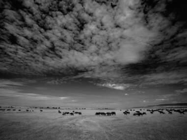 Les plus beaux clichés du Kenya en noir et blanc par la Communauté GEO
