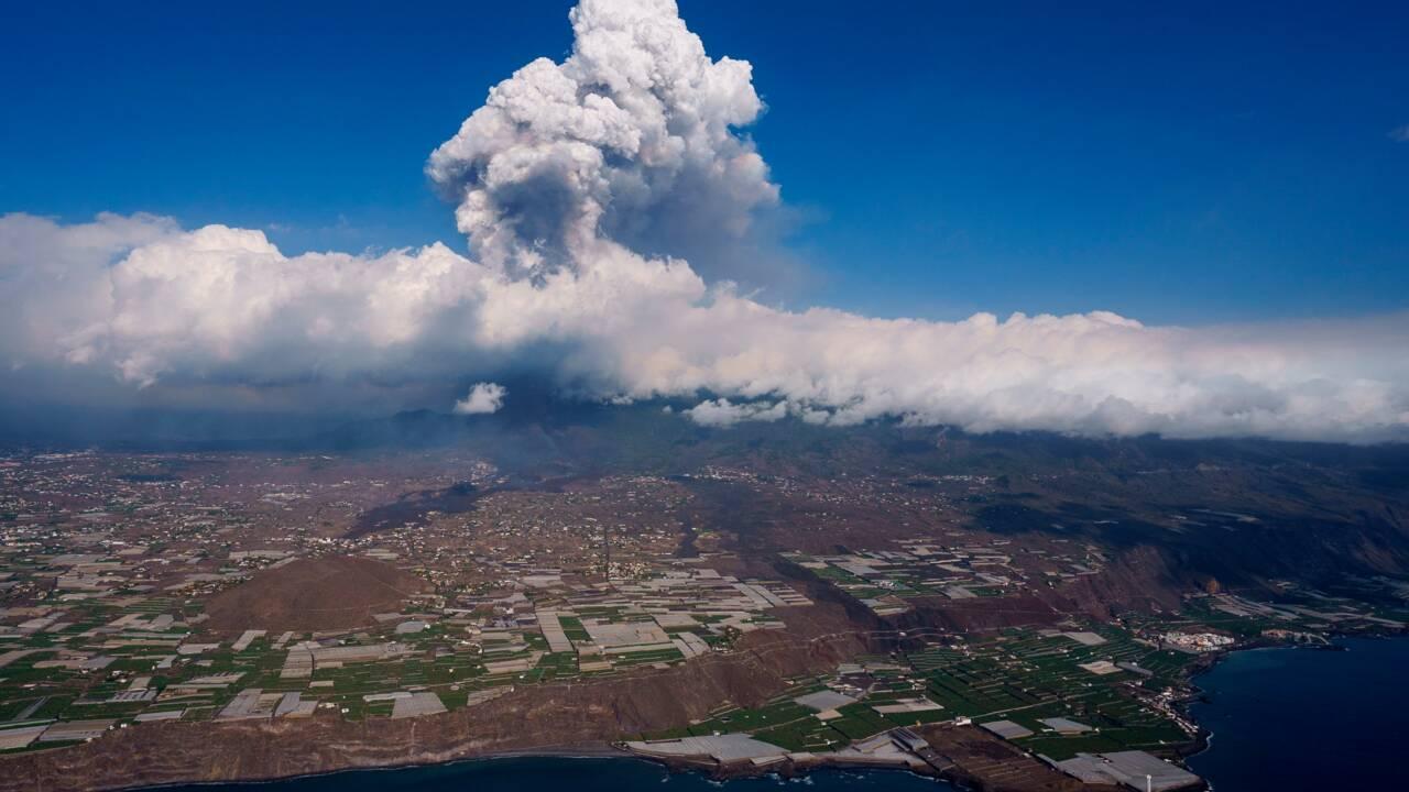 La lave du volcan aux Canaries atteint l'océan, craintes de gaz toxiques