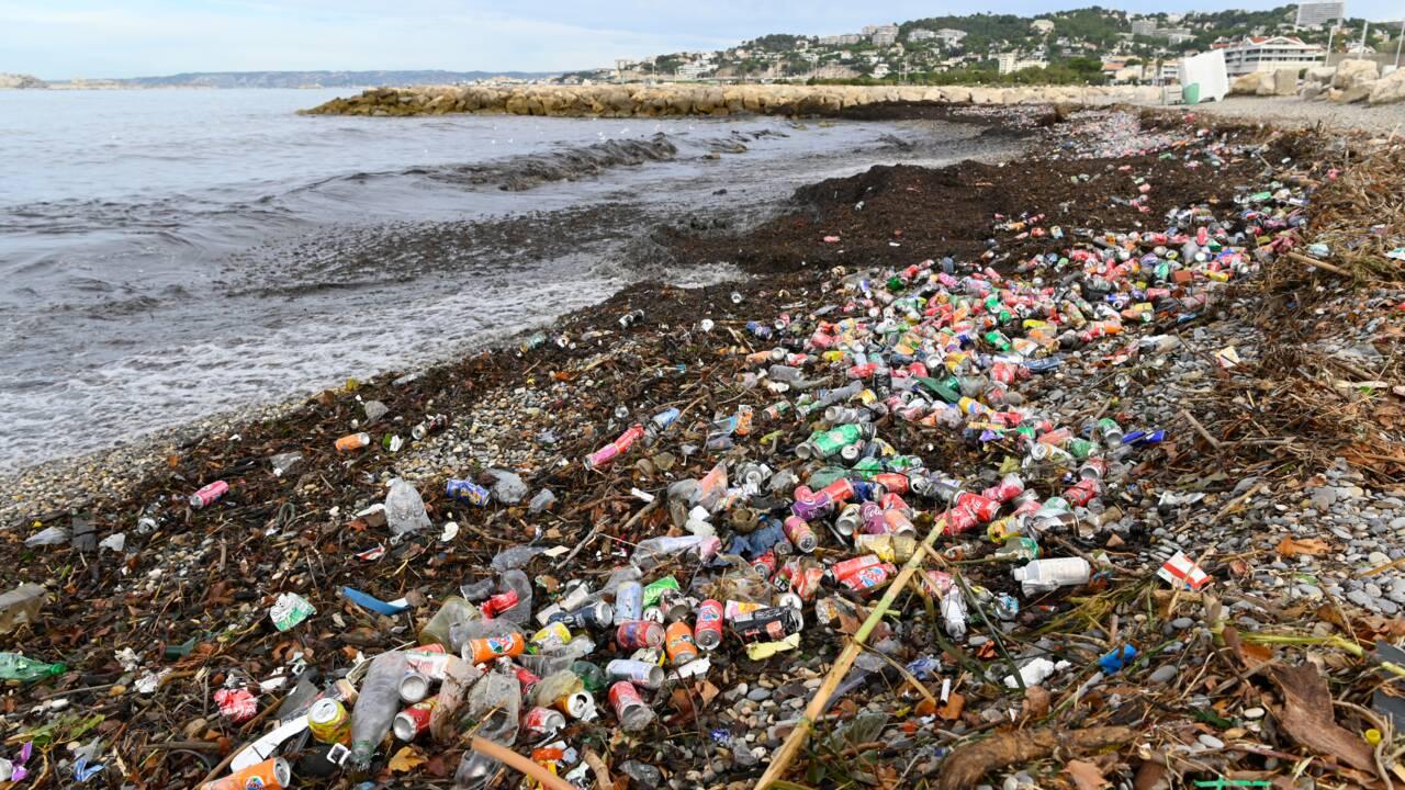 A Marseille, tollé après le déversement de tonnes de déchets dans la mer