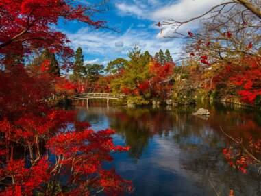 Où admirer les paysages d'automne dans le monde ?