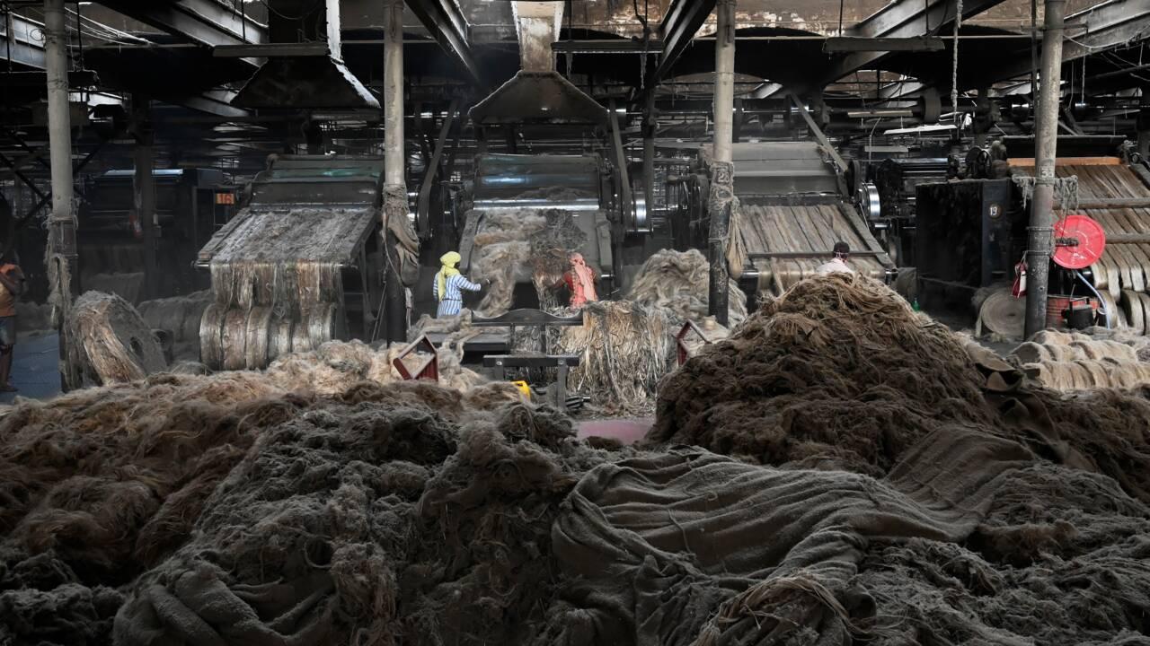 Inde: l'industrie du jute veut croire en son nouvel essor, comme alternative au plastique