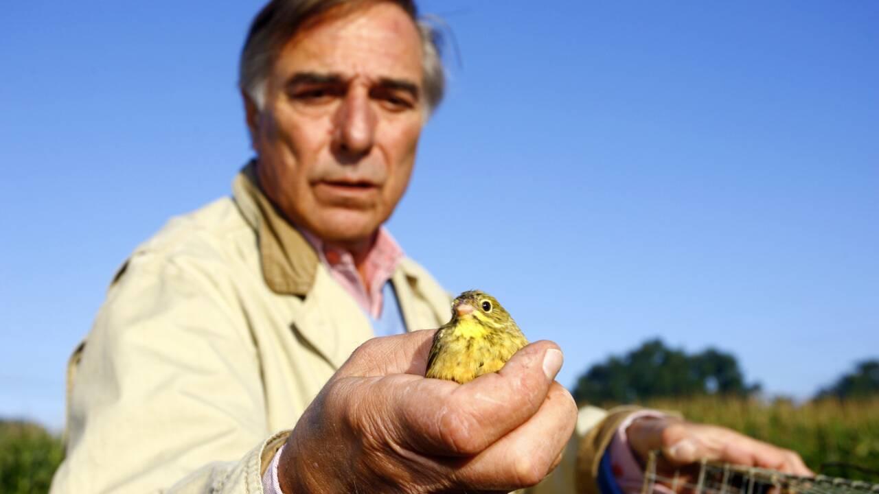 Biodiversité: la LPO tire un sombre bilan du quinquennat de Macron