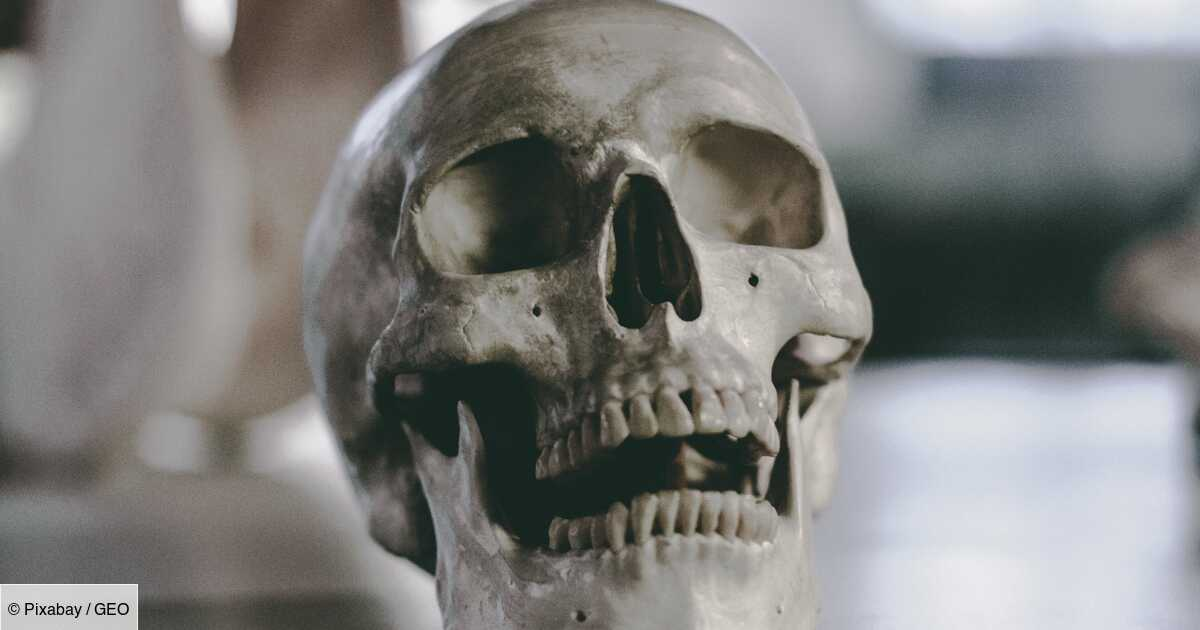 Une analyse de dents bouscule une théorie répandue sur l'origine des Amérindiens