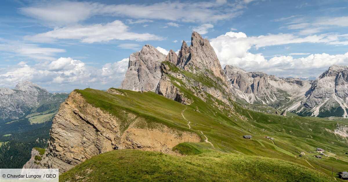 Changement climatique : les sommets des Alpes verdissent