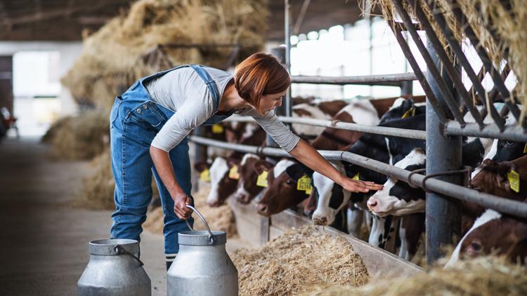 """la gamme Intermarché """"Les éleveurs vous disent merci"""""""
