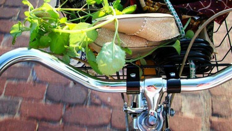 Une bicyclette en Suède, via Sarah Korf sur FlickR