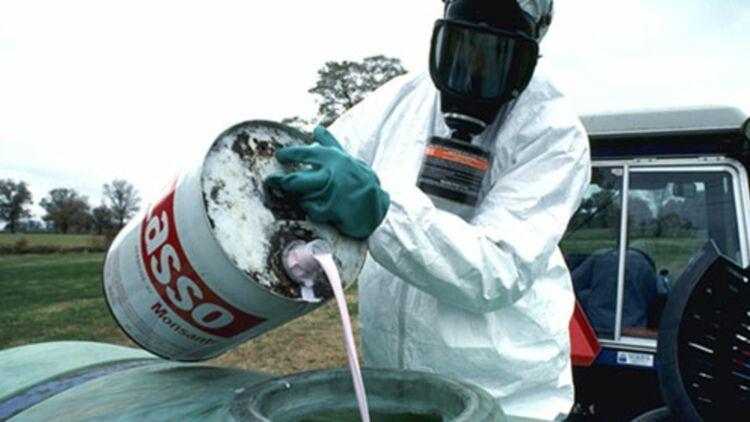 Le géant américain de l'agrochimie Monsanto, qui produit le pesticide Lasso, vient d'être condamné pour la première fois en France. © REUTERS.