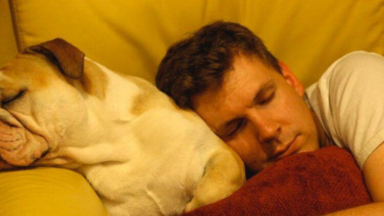 En semaine, les Français dorment en moyenne 7h par nuit. © Flickr / Andrewr.