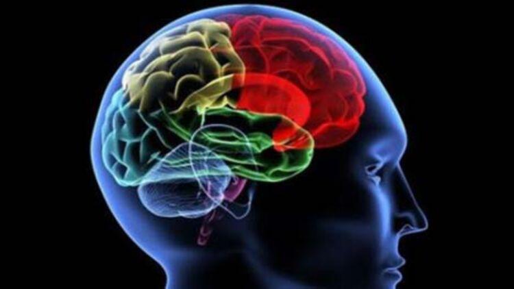 Le neuromarketing prétend agir directement sur notre cerveau ©REUTERS