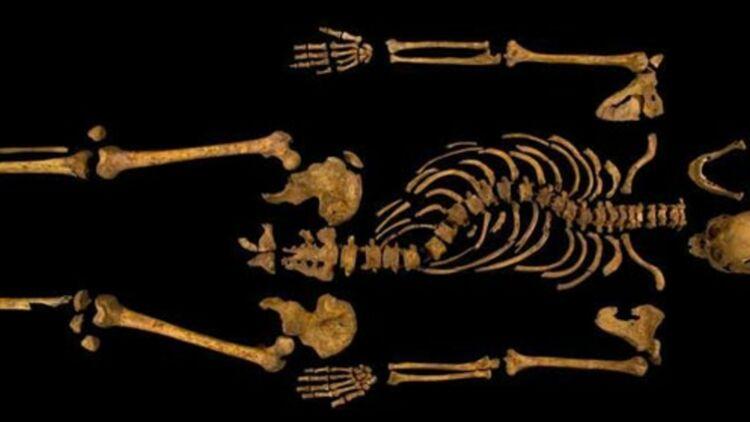 Le squelette identifié comme étant celui du roi d'Angleterre Richard III, © REUTERS