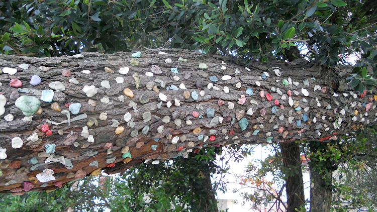 chewing-gums, environnement