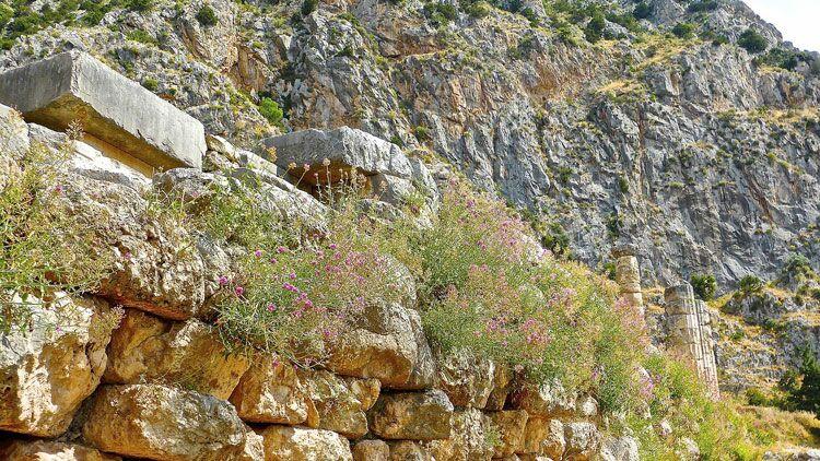 ruines, archéologie, vestiges