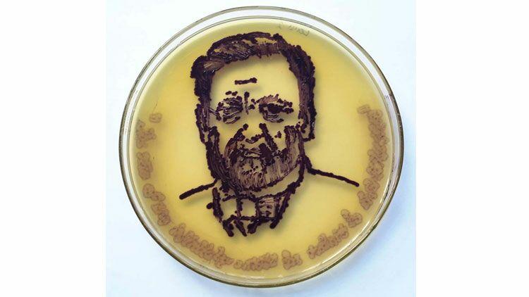 louis pasteur, boite de Pétri, microbiologie, peinture