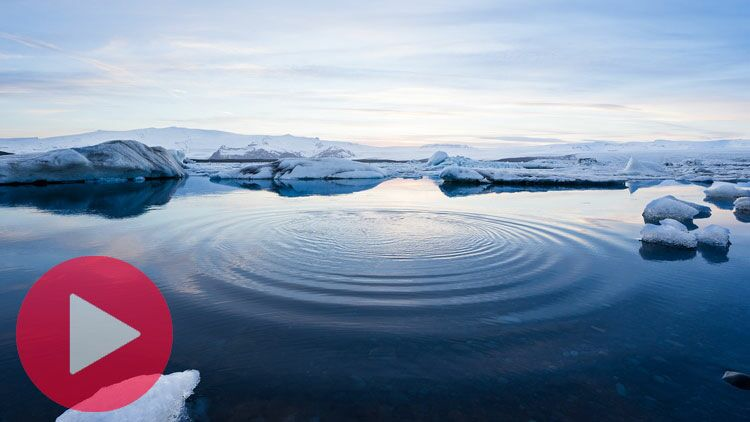 arctique, banquise, océan