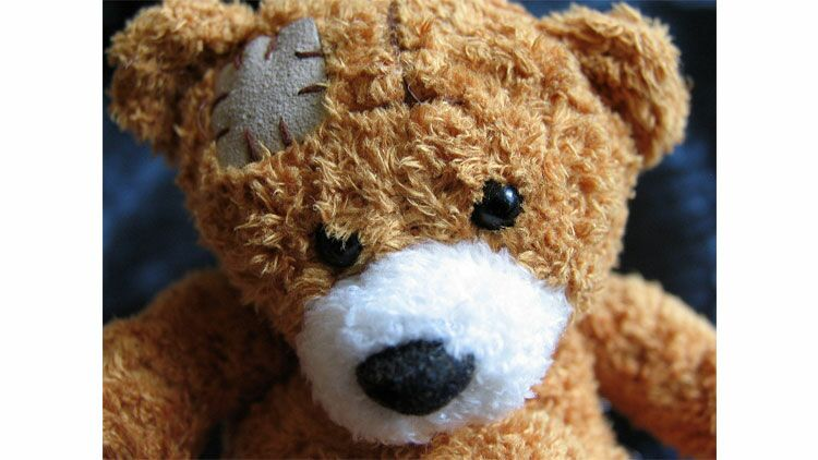 cicatrice, blessure, nounours, ours en peluche, teddy bear