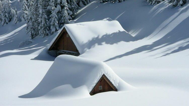 neige, blanc, chalet, arbres