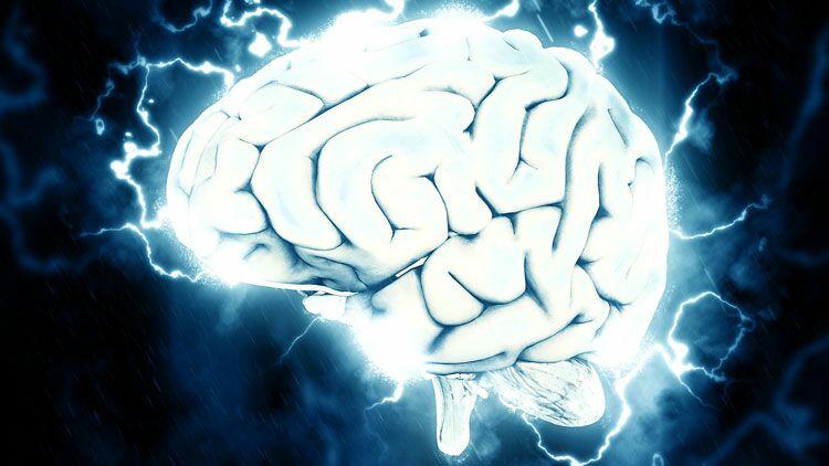 cerveau, magnétoencéphalographie