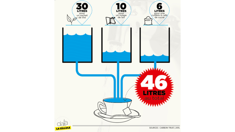 Combien d'eau pour mon thé ?