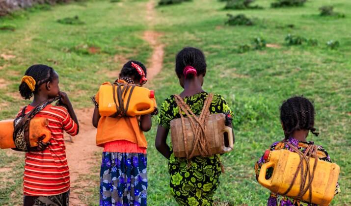 Afrique de l'est: les criquets menacent la sécurité alimentaire
