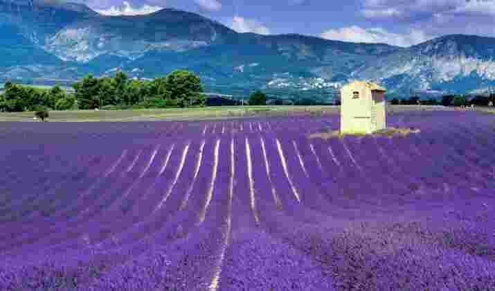 Trois gares vont rouvrir en Ardèche, seul département français sans train de voyageurs