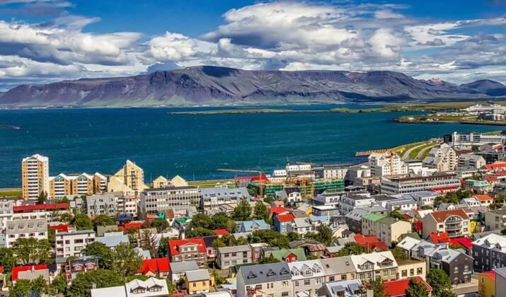 Pas de baleine bleue : le cétacé harponné en Islande était un hybride