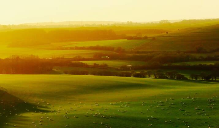 Angleterre : un projet de tunnel près du légendaire site de Stonehenge suscite l'indignation