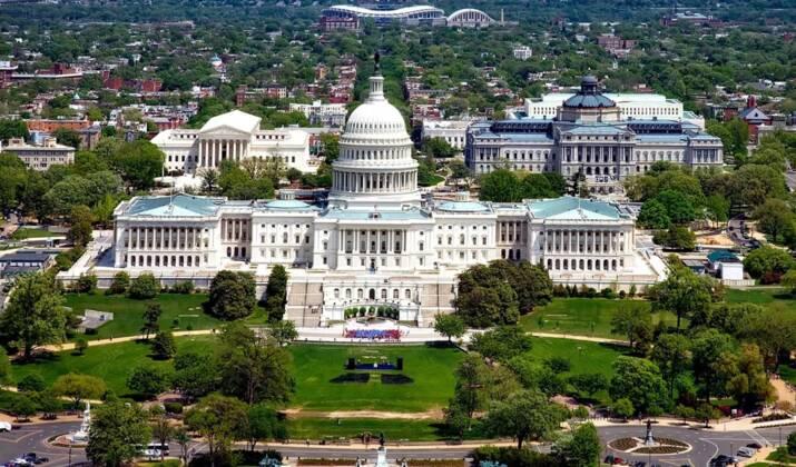 """Botanique : un """"Phallus de Titan"""" impressionne à Washington"""