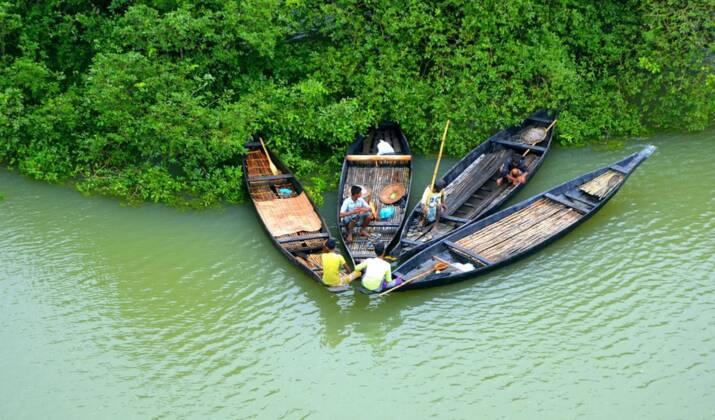 Bangladesh: course pour sauver des tortues prises dans une marée géante de plastiques