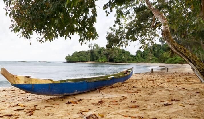 Sur les traces d'un improbable voyage de Picasso en Côte d'Ivoire