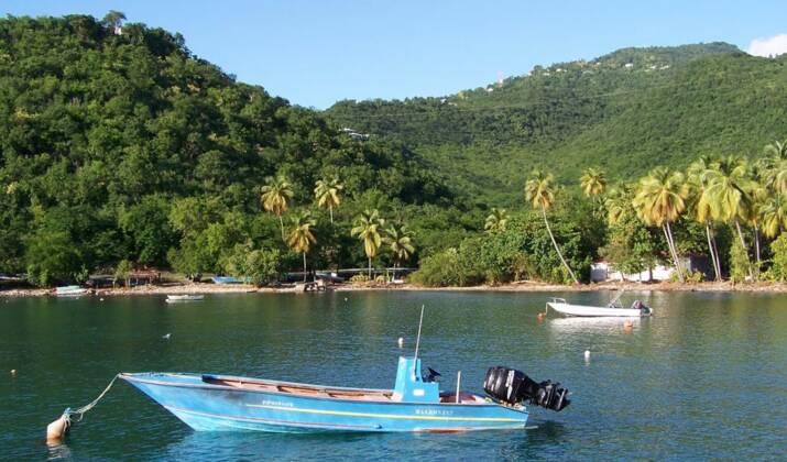 VIDÉO 360° – Guadeloupe : dans la baie de Pointe-à-Pitre, avec les anges gardiens du corail