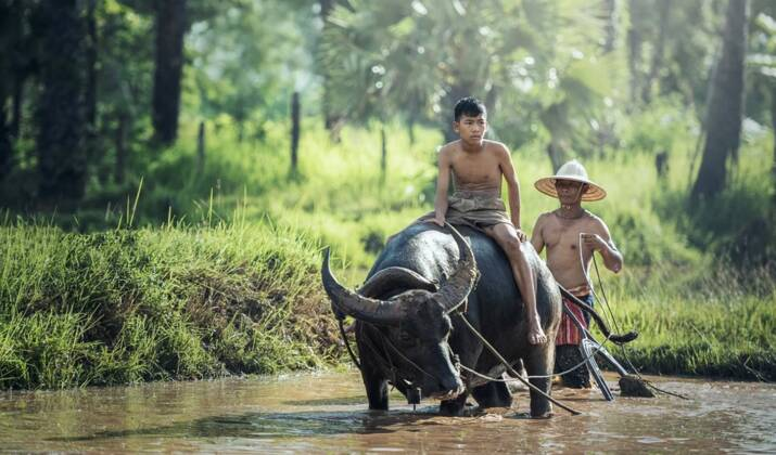 Indonésie : l'enquête édifiante sur le Citarum, le fleuve le plus pollué au monde