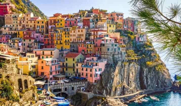 Italie : découvrez les images de Pistacchio, le chiot né avec un pelage vert