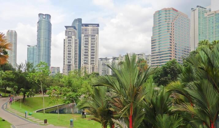 Malaisie: saisie record de pangolins