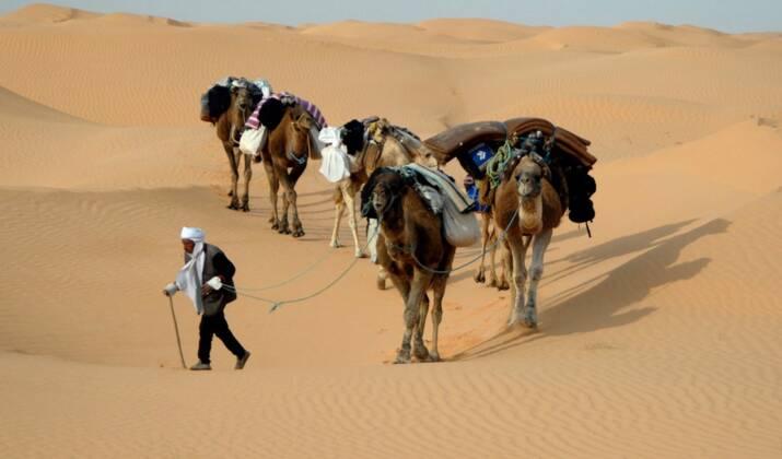 Ouverture des frontières Tunisie : vers un assouplissement des mesures