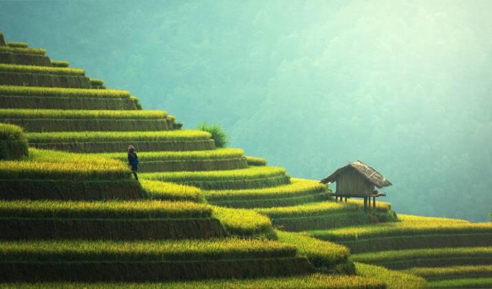 Cambodge: l'artisanat au service de l'environnement
