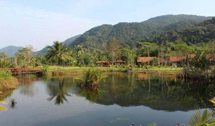 """Le Loto du Patrimoine au chevet de la """"Sixtine de l'Amazonie"""" en Guyane"""