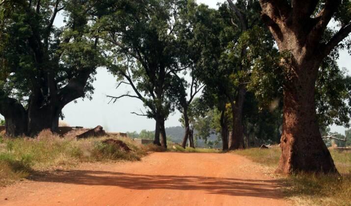 PHOTOS - Burkina Faso : à la rencontre du peuple Senoufo